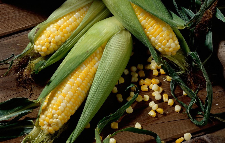 Фото обои зерна, кукуруза, початок, маис