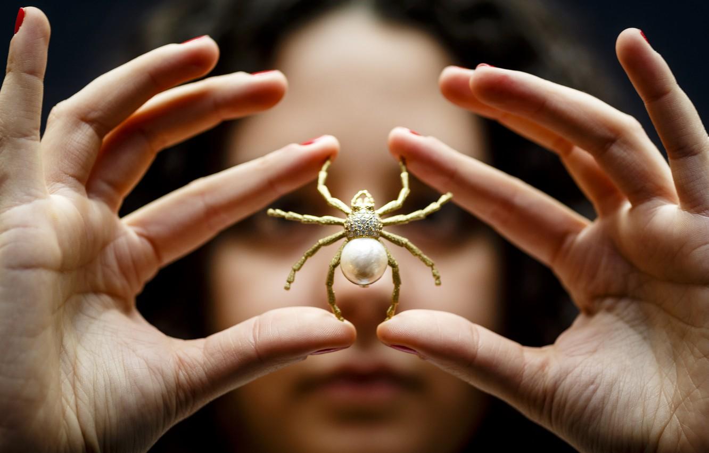 Фото обои spider, art, fingers, jewelry