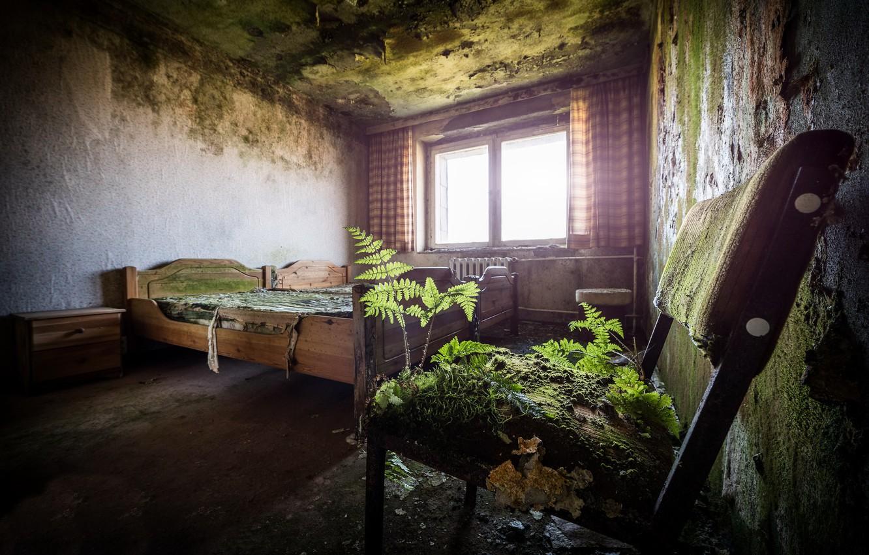 Фото обои комната, кровать, стул
