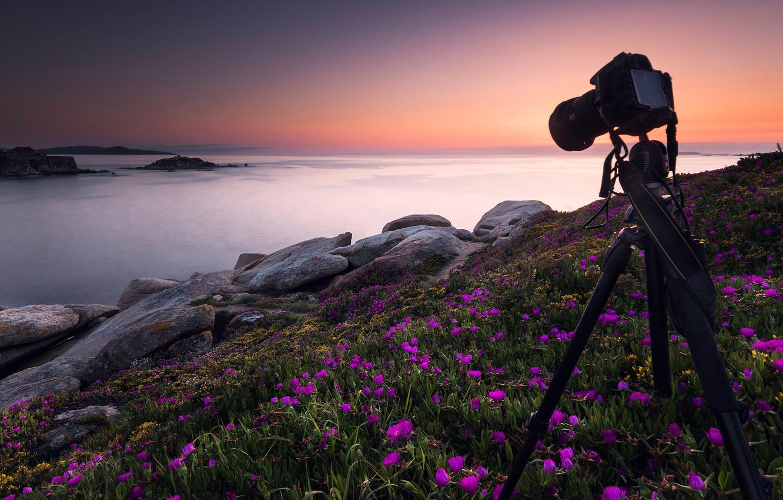 Фото обои море, небо, закат, цветы, камни, рассвет, фотосъемка, берег, фотоаппарат, розовые, Испания, фотокамера, тренога