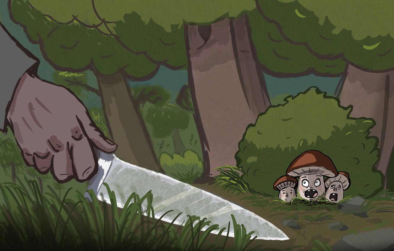 Фото обои природа, грибы, нож, грибник
