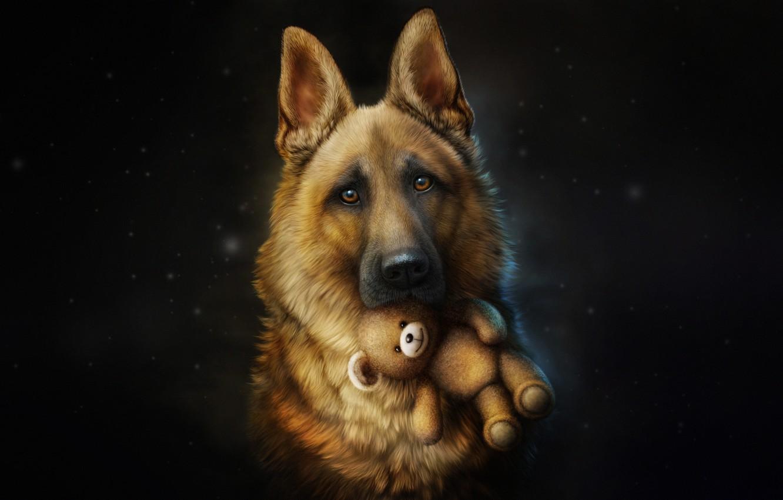 Фото обои Собака, Игрушка, Стиль, Овчарка, Dog, Fallout, Арт, Art, Style, Illustration, Друг, Животное, Animal, Toy, Friend, …