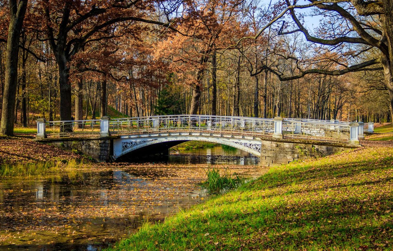 Фото обои осень, листья, деревья, мост, парк, река, colorful, river, nature, bridge, park, autumn, leaves, tree