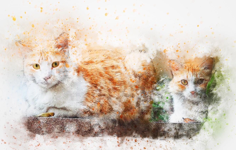 Фото обои кошки, фон, акварель, art