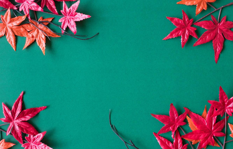 Фото обои осень, листья, фон, red, клен, background, autumn, leaves, maple