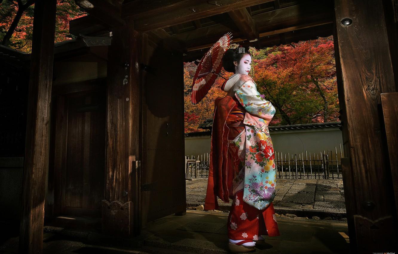 Фото обои девушка, Япония, гейша