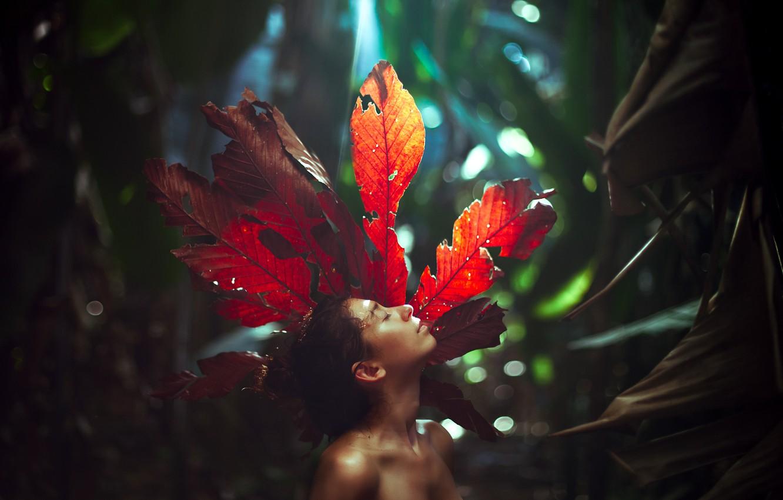 Фото обои лес, девушка, лист, боке