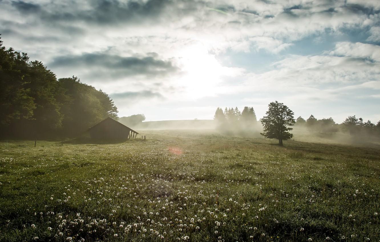 для туман летом фото классе комфорт позаботились