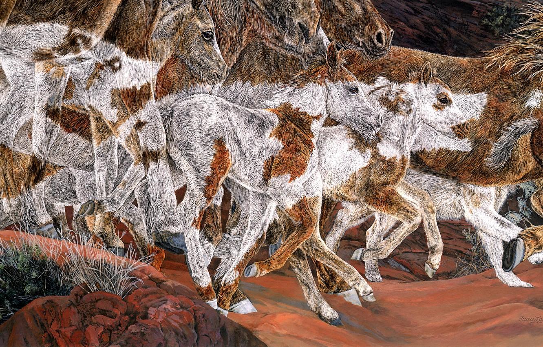 Фото обои камни, рисунок, графика, кони, картина, стилизация, лошади, арт, бег, пятна, окрас, живопись, много, морды, копыта, …