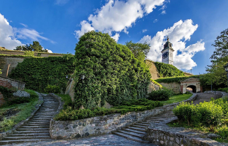 Фото обои Лестница, Сербия, Novi Sad