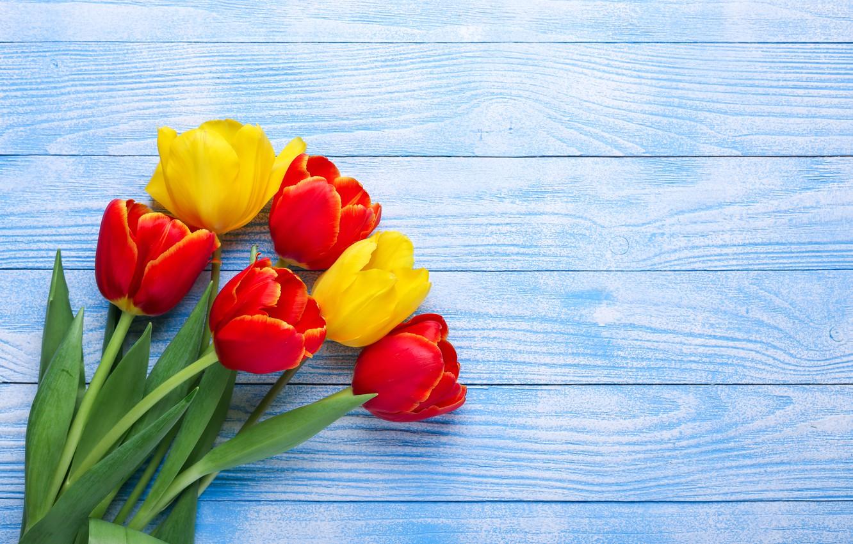 Фото обои цветы, желтые, тюльпаны, красные, red, yellow, wood, flowers, tulips