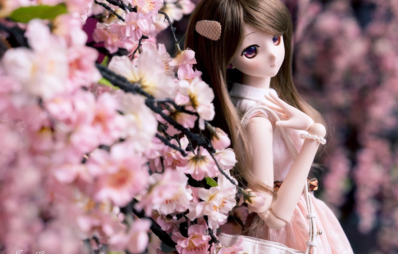 Обои Кукла, цветы. Разное foto 15