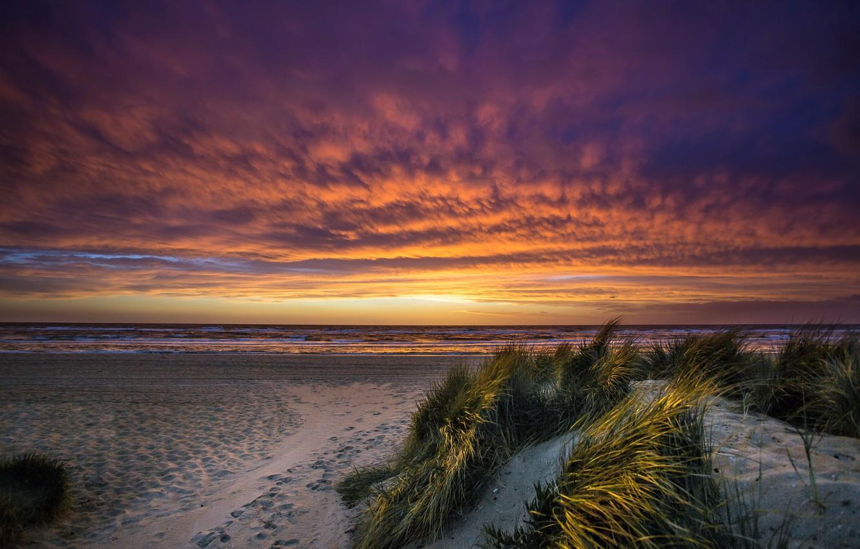 Фото обои sea, sunset, Port Phillip Bay, Chelsea Beach