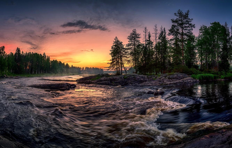 Фото обои лес, закат, река