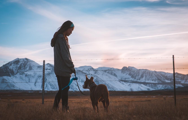 Фото обои горы, Девушка, собака