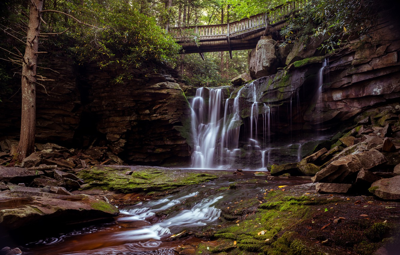 Фото обои камни, водопад, США, мостик, Blackwater Falls State Park