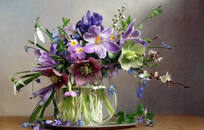 Фото обои цветы, ветки, стол, крокусы, ваза, первоцветы, поднос, морозник