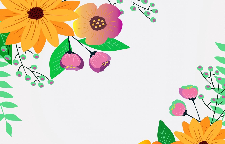 Фото обои цветы, фон, открытка, шаблон, заготовка