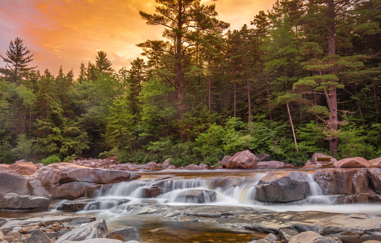 Фото обои лес, камни, фото, водопад