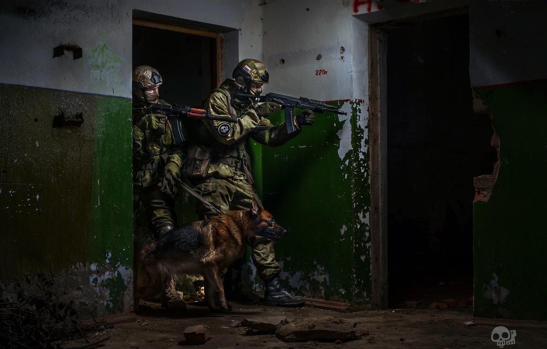 Фото обои собака, солдаты, спецназ