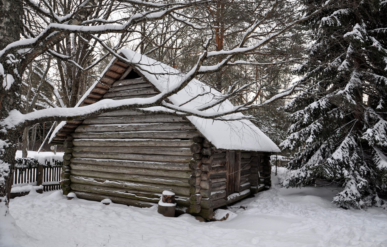 Фото обои зима, лес, снег, деревья, избушка, деревня, домик, house, хижина, forest, landscape, winter, snow, countryside, hut