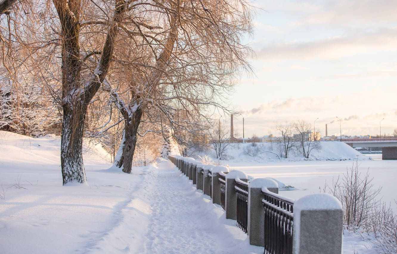 Фото обои зима, снег, деревья, река, рассвет, утро, мороз, сугробы, россия, питер, холодно, выборг