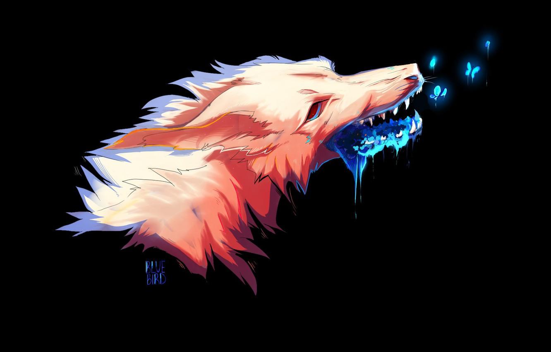 Фото обои морда, пасть, оскал, черный фон, колдовство, слизь, fox demon
