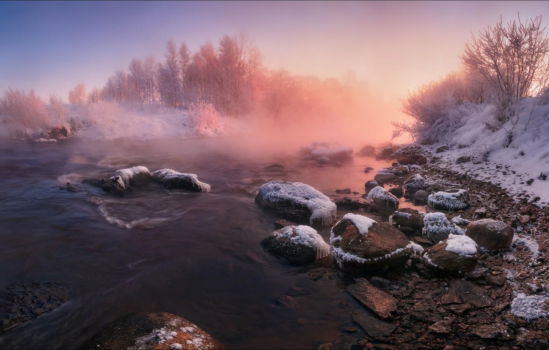 Фото обои зима, берег, водоем