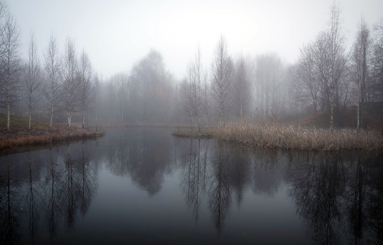 Фото обои осень, туман, озеро
