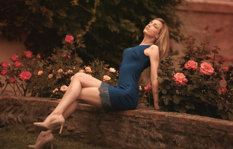 Фото обои цветы, поза, газон, модель, портрет, розы, макияж, сад, фигура, стройная, платье, прическа, блондинка, туфли, ножки, …
