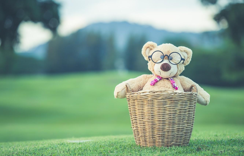 Фото обои лето, корзина, игрушка, медведь, мишка, summer, vintage, bear, retro, teddy, одинокий, cute, lonely