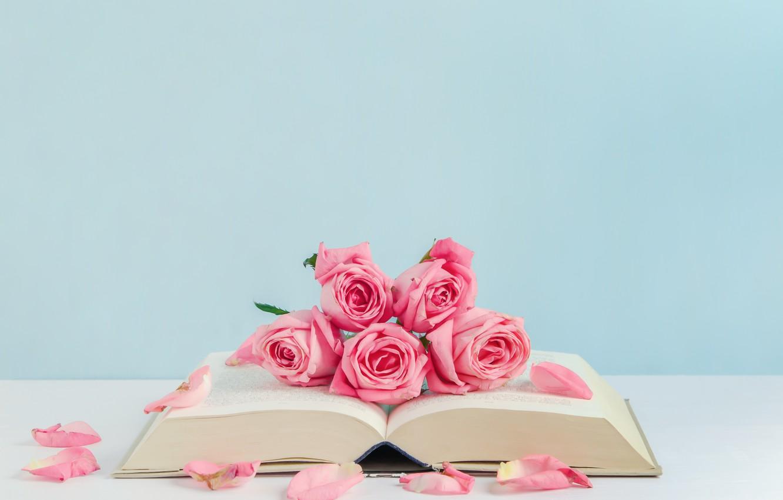 Фото обои цветы, розы, лепестки, книга, розовые, бутоны, pink, flowers, romantic, petals, roses, cute