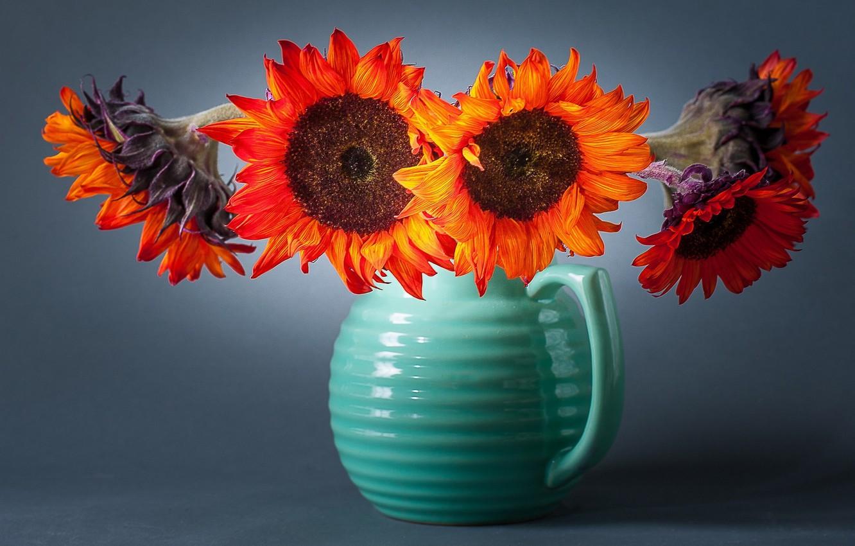 Фото обои подсолнухи, цветы, фон, ваза