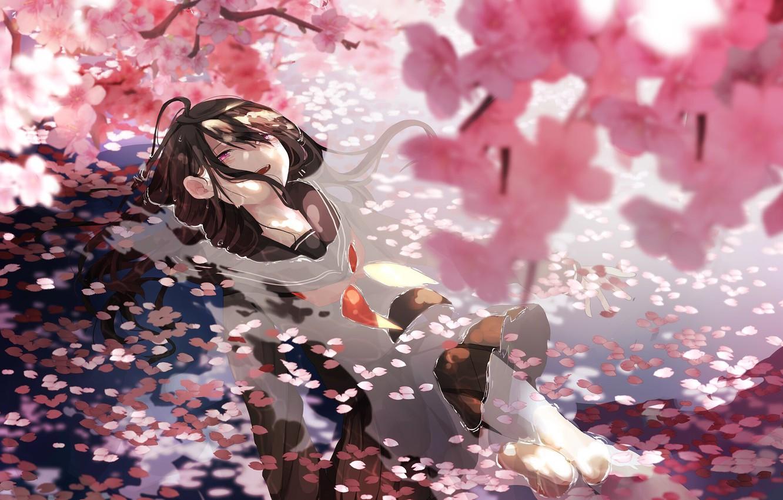 Фото обои вода, сакура, школьница