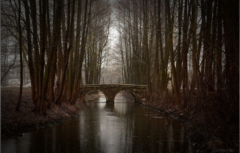 Фото обои осень, мост, парк, речка