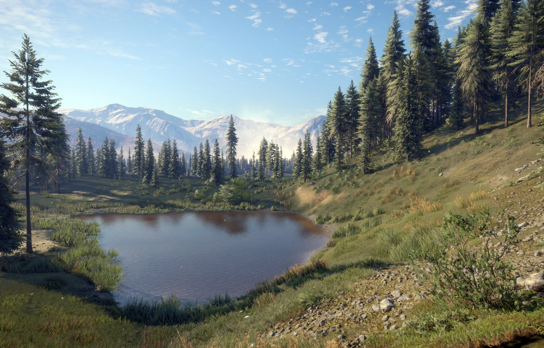 Фото обои game, Expansive Worlds, thehunter call of the wild