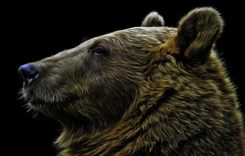 виде картинки компьютерные морды медведя каждый этих фотографов