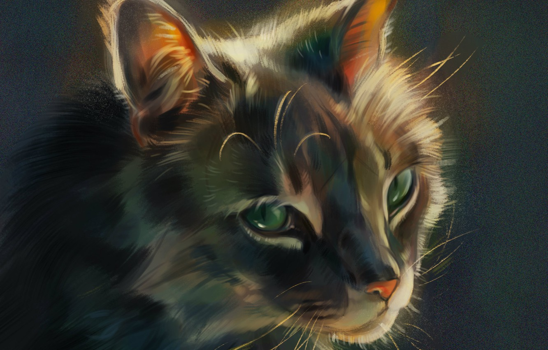 Фото обои мордочка, зеленые глаза, серая кошка, by Pixxus