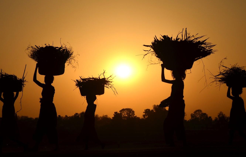 Фото обои sunset, women, harvest
