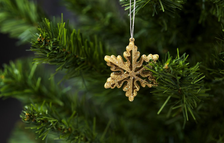 Фото обои украшения, елка, Новый Год, Рождество, Christmas, New Year, decoration, Merry, fir tree