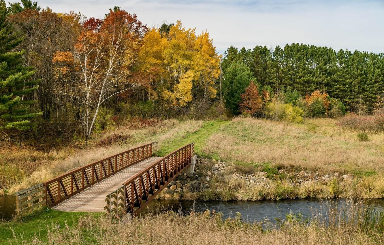 Фото обои поле, осень, пейзаж, мост, природа, река, красота, простор, панорама, берёзы