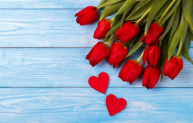Обои Red, tulips. Разное foto 17