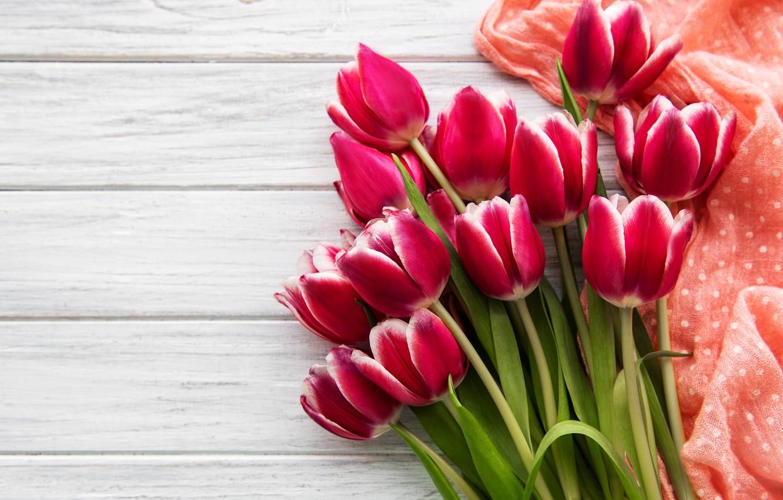 Фото обои цветы, букет, тюльпаны, розовые, pink, flowers, tulips