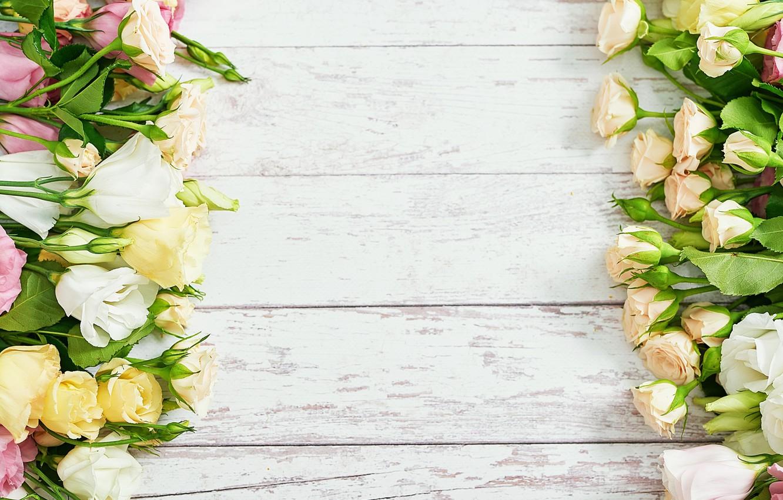Фото обои цветы, розы, букет, разные, композиция, эустома