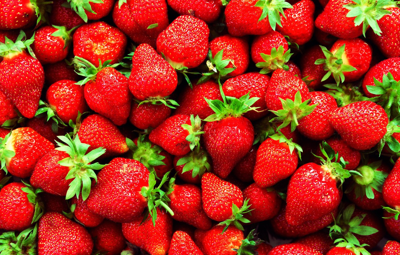 Обои ягода, клубника. Еда foto 6
