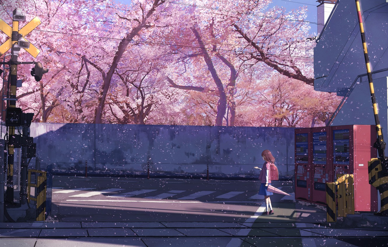 Фото обои зонт, Япония, школьница, рюкзак, шлагбаум, лепестки сакуры, пешеходный переход, семафор, бетонная стена, жд пути, цветение …