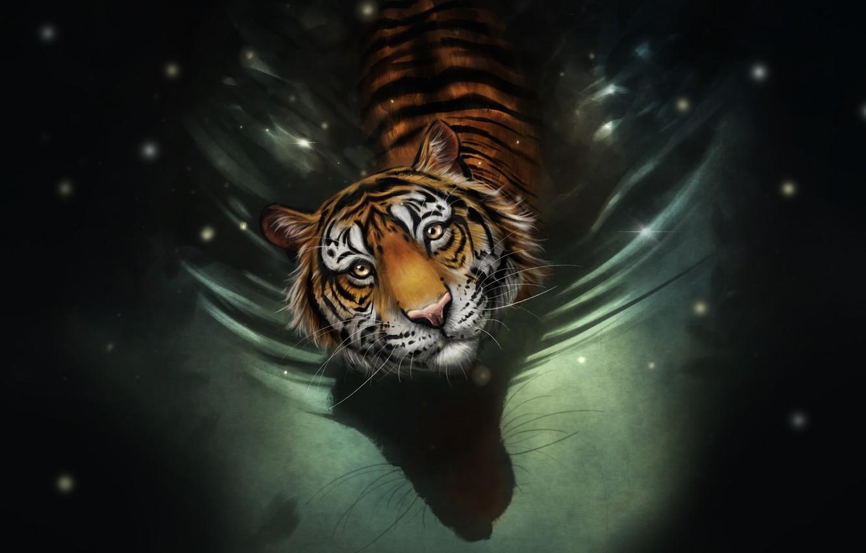 Фото обои Вода, Рисунок, Взгляд, Кошка, Тигр, Морда, Art, Tiger, Water, Cat, Полосатый, by Bianka Faragó, Bianka …