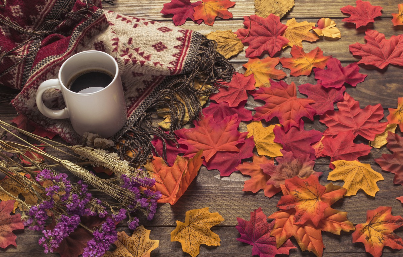 Фото обои осень, листья, цветы, фон, дерево, кофе, colorful, шарф, чашка, wood, background, autumn, leaves, cup, coffee, …