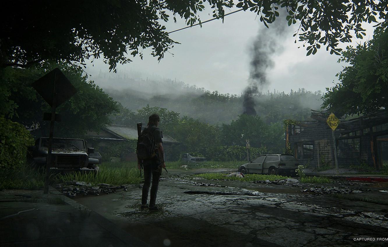 Фото обои лес, машины, дым, деревня, арт, Элли, The Last of Us Part II
