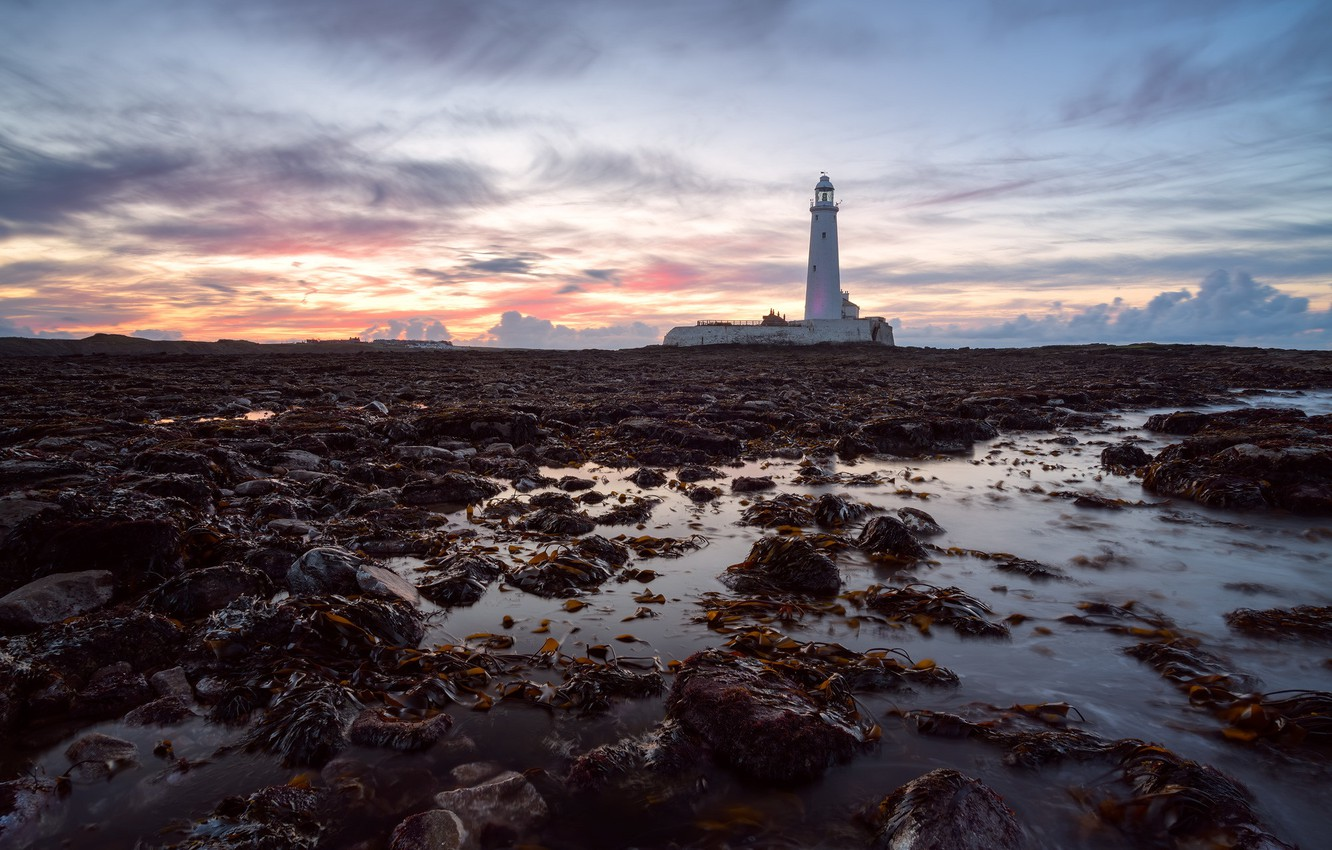 Фото обои England, St Mary's Lighthouse, Tyneside